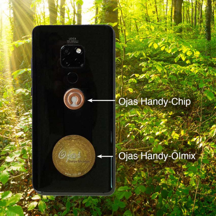 Ojas Handy Chip-Set
